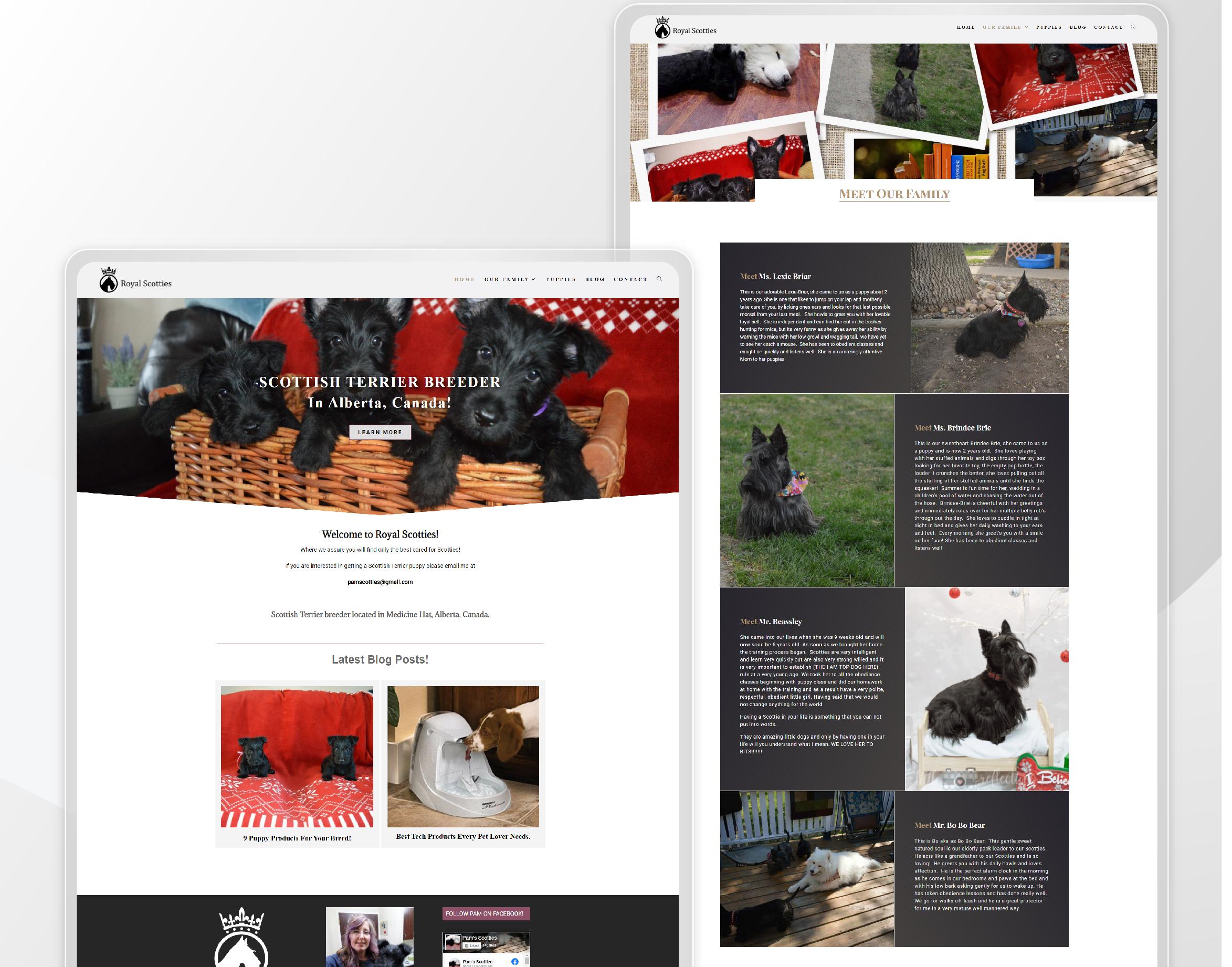 web-portfolio-casetudies-09